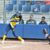 softball_catherinewallin_file