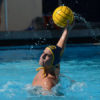 waterpolo_6_sallydowd_file-copy-698x450
