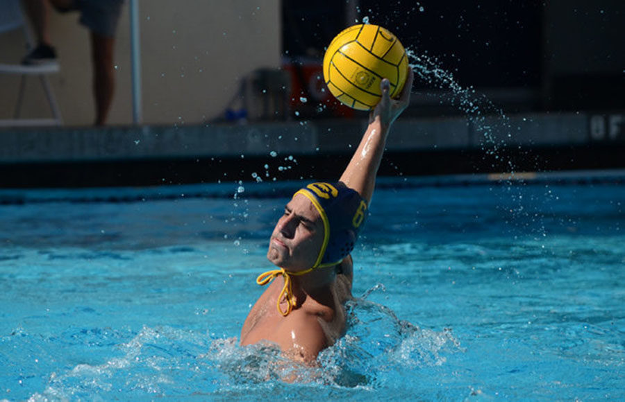 waterpolo_6_sallydowd_file
