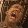 Man screams in agony as his head is trapped in a cage full of bees.