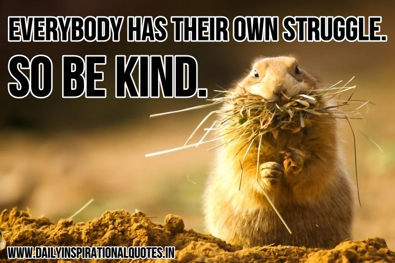 Everybody has their own struggle. so be kind. ~ Anonymous