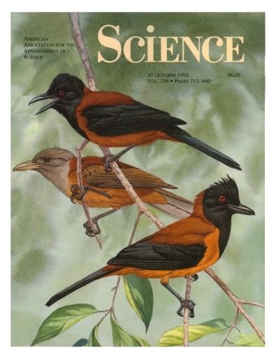 1992 cover Science Pithoui.jpg