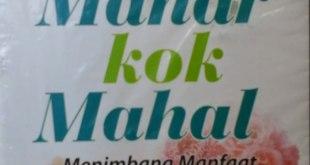 "Cover buku ""Mahar kok Mahal, Menimbang Manfaat dan Mudaratnya"". (dienariek.blogspot.com)"