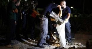 Roket yang jatuh di Ashkelon (paltimes.net)