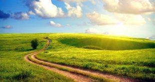 padang-rumput-hijau-langit-biru-indah