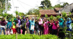 Badan Ketahanan Pangan dan Pelaksana Penyuluh Pertanian, Perikanan dan Kehutanan (BKP5K) Kabupaten Bogor menyalurkan bantuan dana kepada Kelompok Wanita Tani (KWT) Sekar Mandiri pada Kamis (22/06/2016).  (Aci/Putri/PKPU)