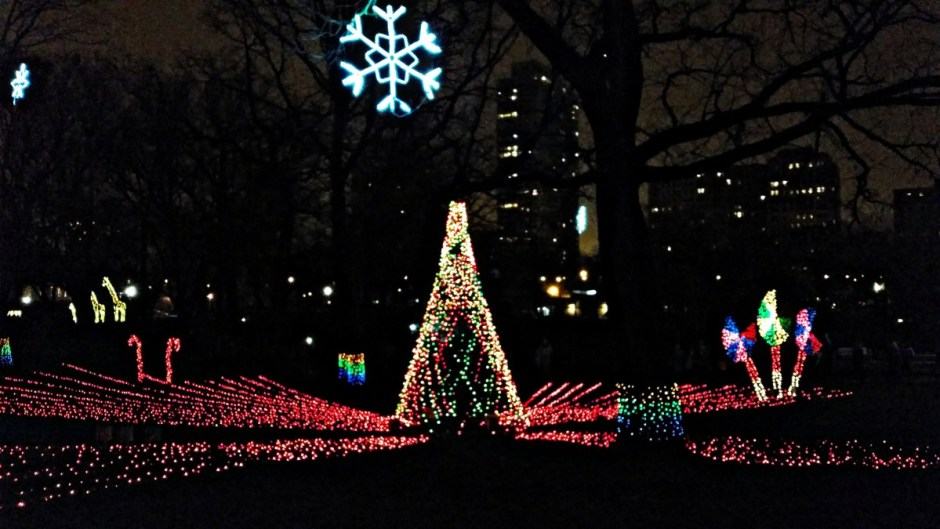 Lincoln Park Zoo Lights - Monthly Recap