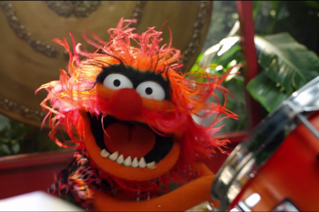 Get Down with Dr. Teeth and the Electric Mayhem as They Perform Jungle Boogie