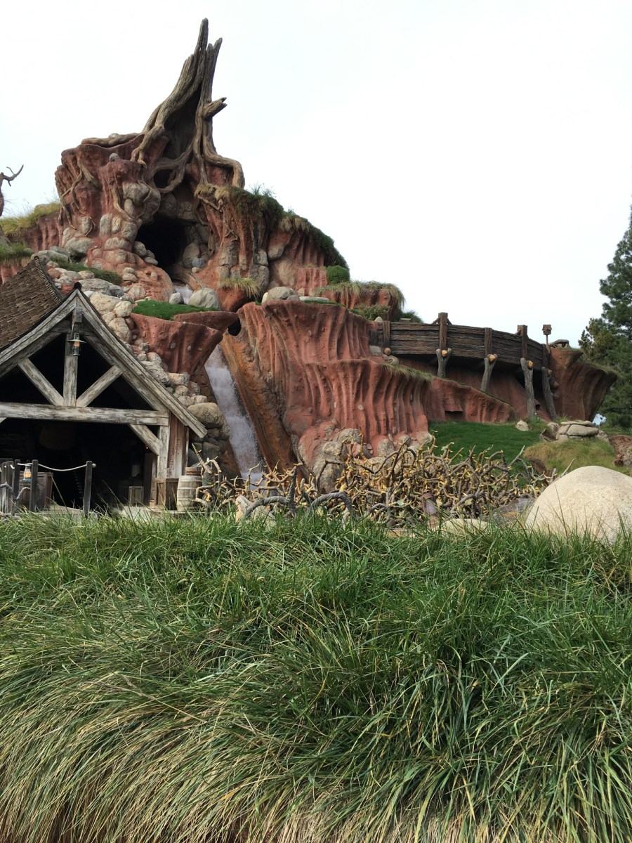 Splash Mountain: A Tale of Survival