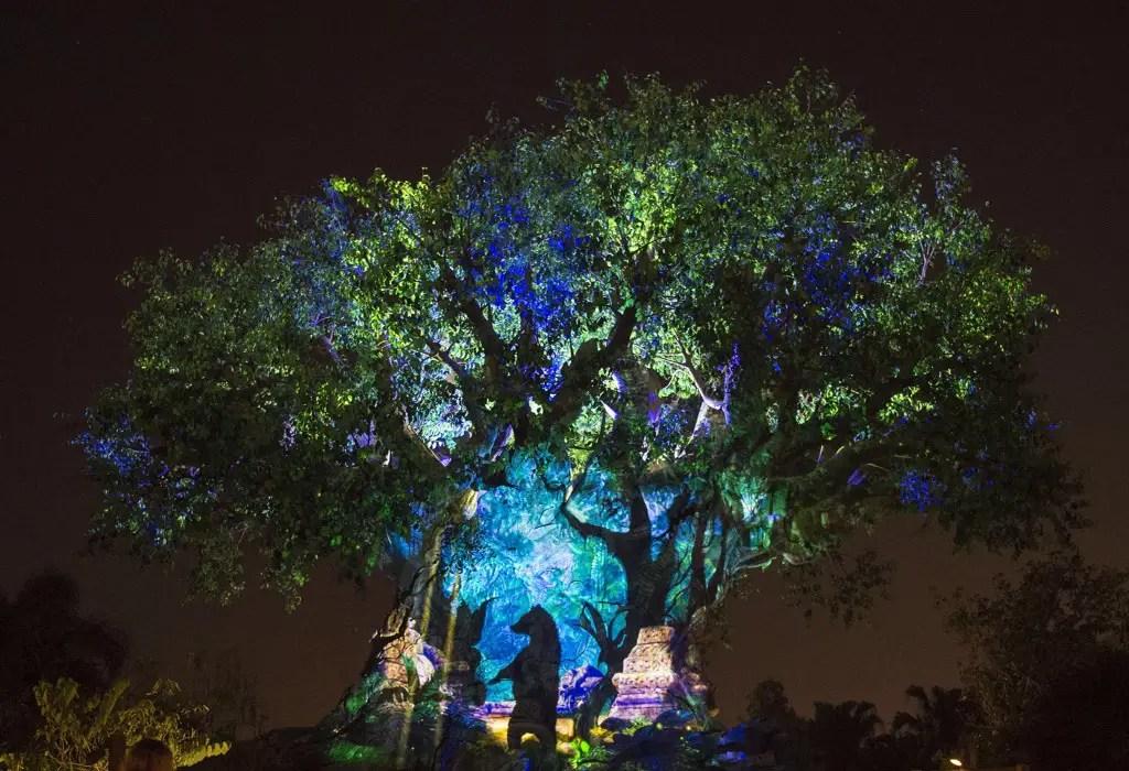 Experience Nighttime Like Never Before at Disney's Animal Kingdom!