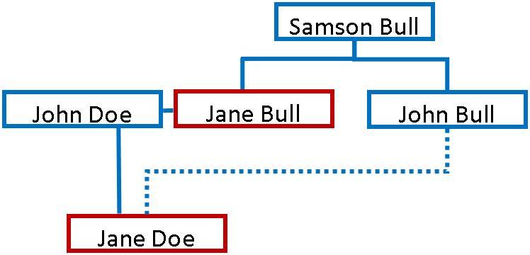 Using Indirect Evidence to Establish Genealogical Connections