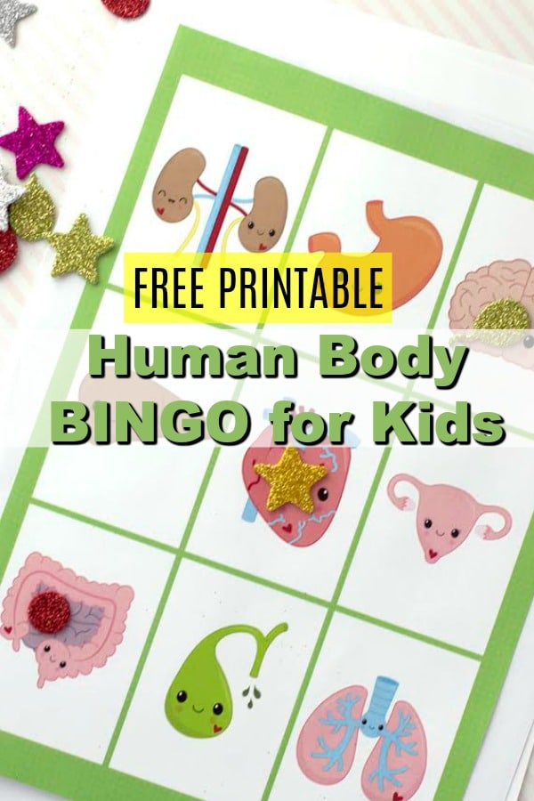 Human Body Printable Bingo Cards