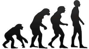 Evolution in Web Design