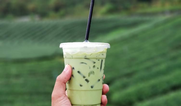 Aloe Vera Juice Helps Improving Health