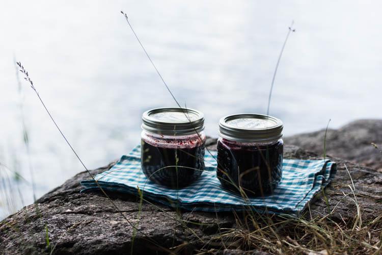 Blueberry jam-13