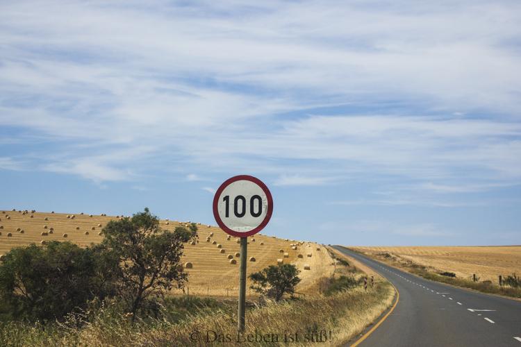 on-the-road-11-von-44