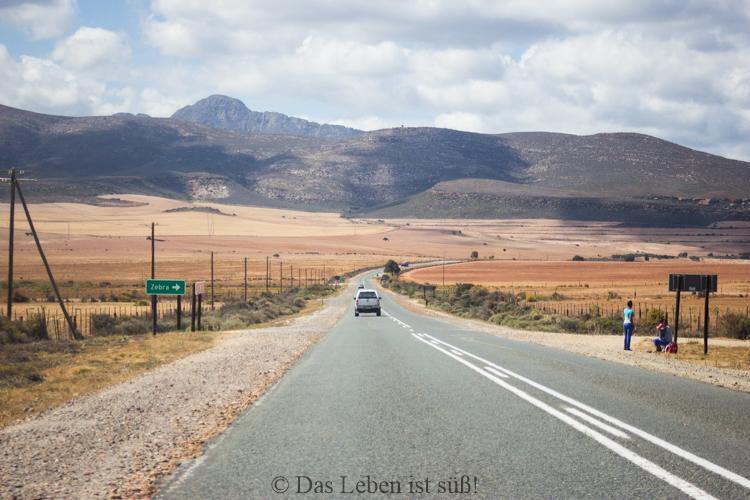 On the road (2 von 2)