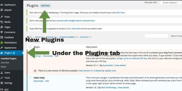 Screenshot 7 - setting up WordPress general settings - Plugins