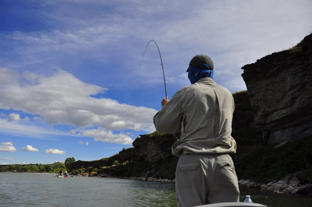 Alberta Fly-Fishing Archives - Dave Brown Outfitters - Fly-Fishing