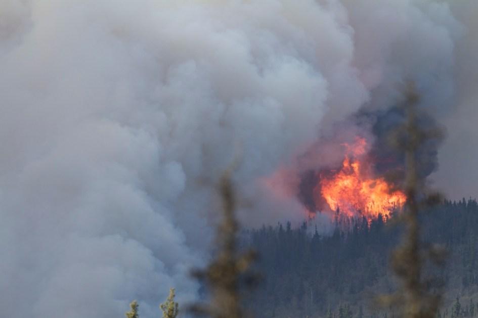 A canopy forest-fire burns through black spruce forest on a hillside near Fairbanks, Alaska.