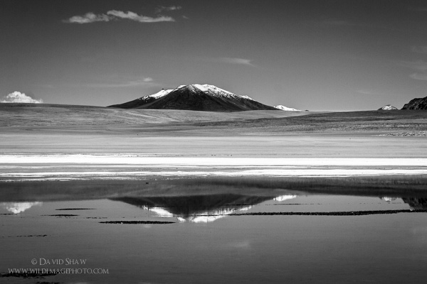 This black and white image is of a less saline lake not far from Salar de Uyuni in Bolivia. It's relatively stability, though still chemical-laden allows for algae, microorganisms, and thousands of Flamingos that forage on them, to survive here. Very different from the Salar.