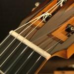 Classical Guitar by David Finck