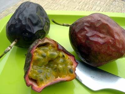 3nicepassionfruitparis.jpg