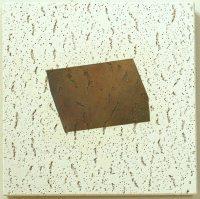 12x12 Ceiling Tiles - Houses Plans - Designs
