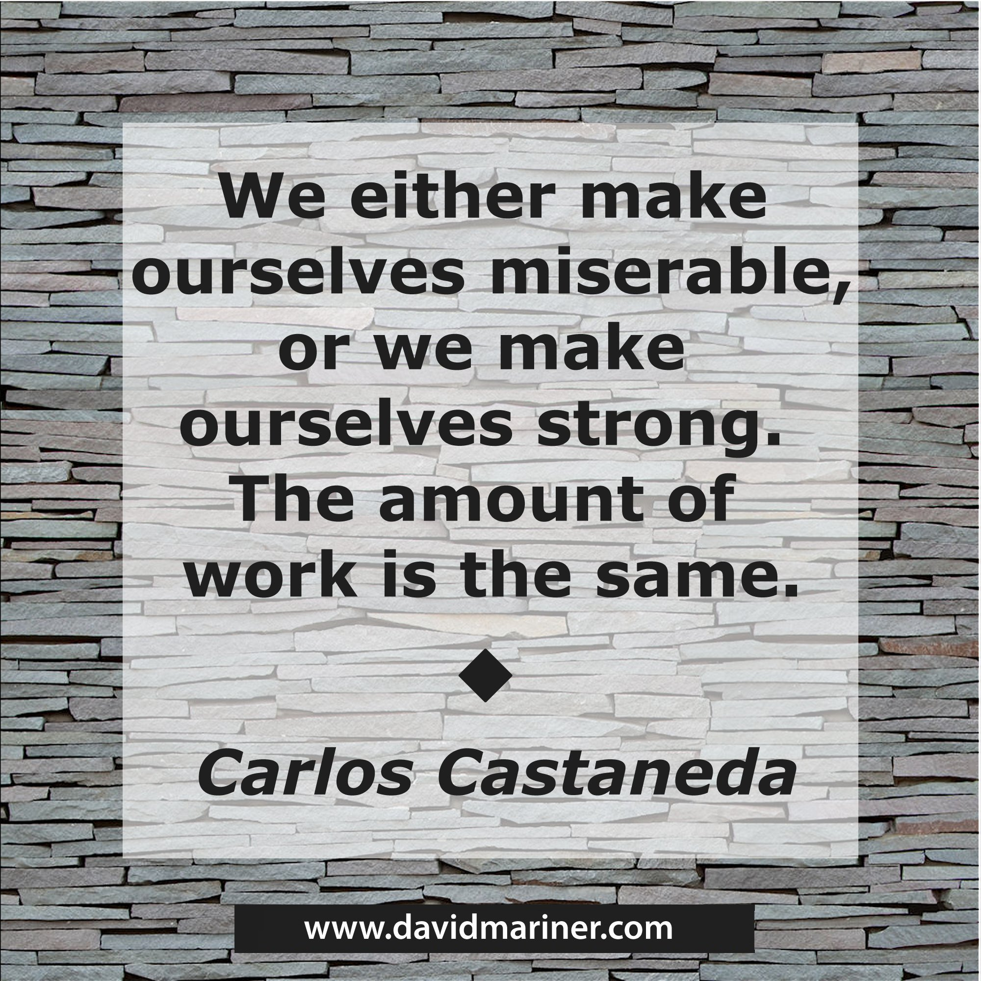 We either make ourselves miserable or we make ourselves strong. The amount of work is the same. - Carlos Castaneda