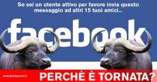 bufala-15-messaggi-facebook-cancellato