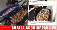 bufala-acchiappaclick-paga-multa-autovelox-monetine