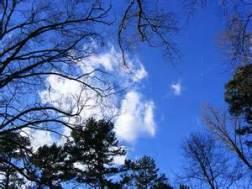 carolina blue sky