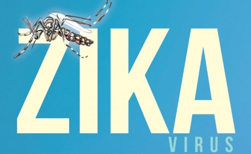 Resident of Yolo County Tests Positive for Zika Virus – First, Don't Panic