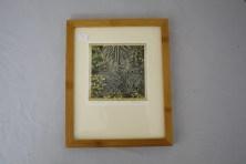 "$75 VALUE - ""Botanical Gardens #9"" photograph by artist David Frank"