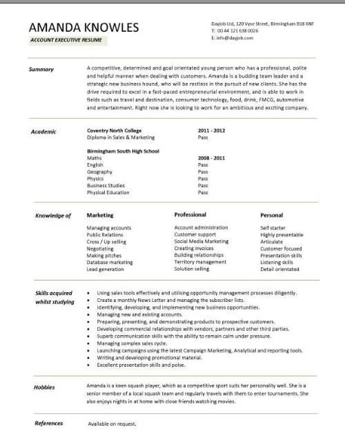 entry level account executive resume sample