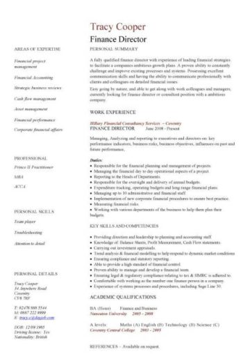 template cv uk finance
