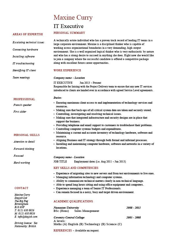 IT executive resume, example, sample, technology, technical skills