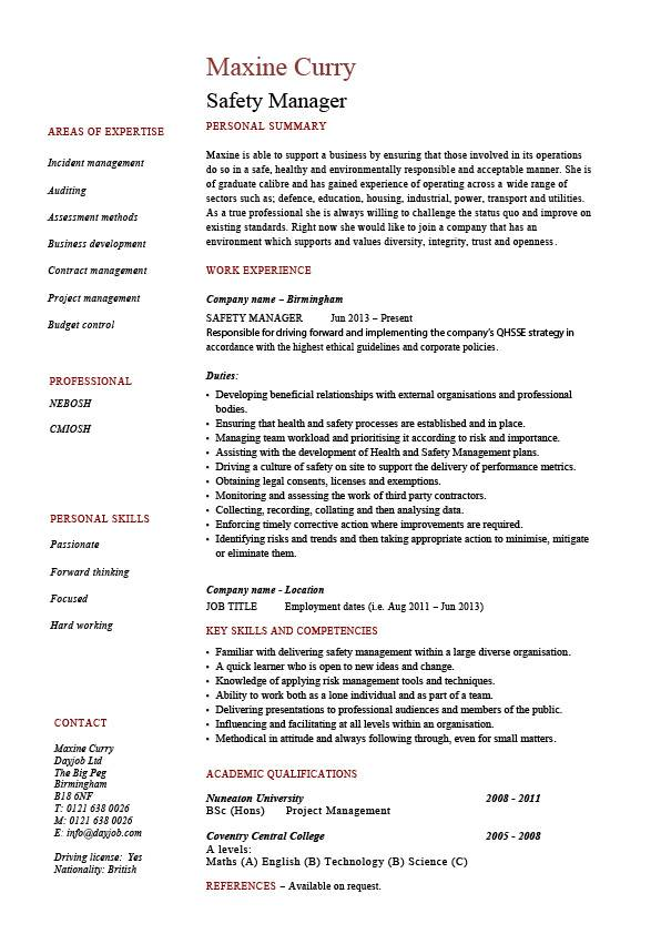 safety director resume sample