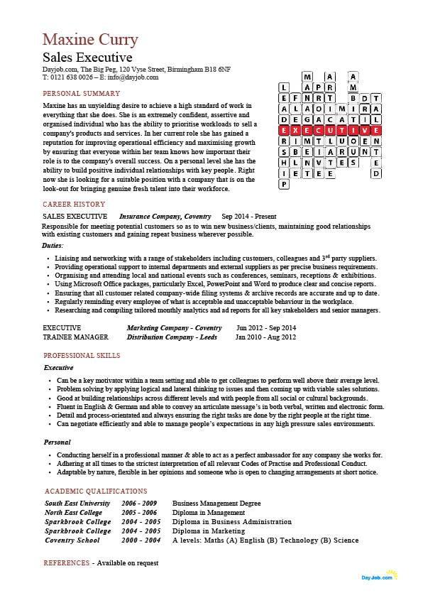 buy executive resume template