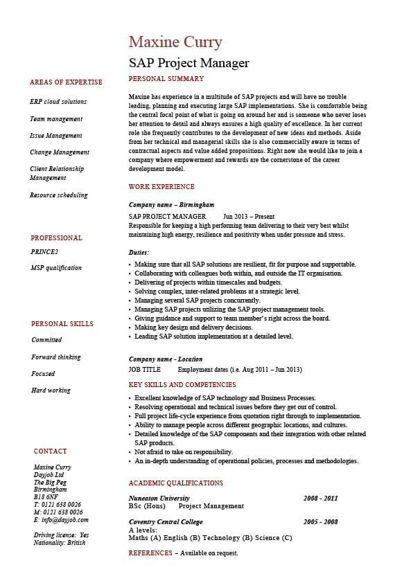 sap project manager - Yokkubkireklamowe