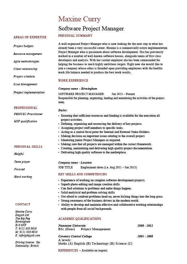 Software project manager resume, example, sample, fixing bugs