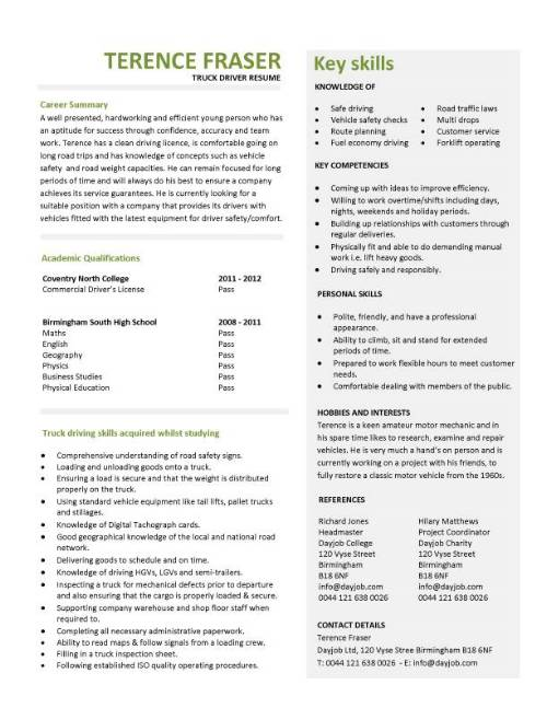 resume profile examples truck driver