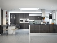 DAYORIS Doors | Modern Kitchen Refacing, Contemporary ...