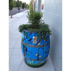 Small Crop Of Wine Barrel Planter