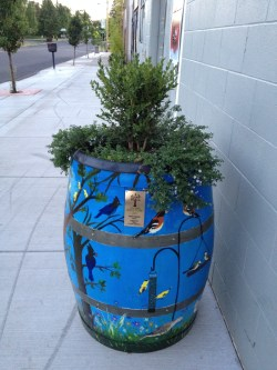 Small Of Wine Barrel Planter