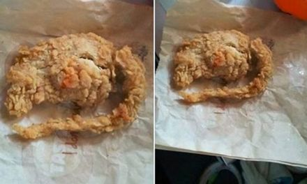 KFC Rat?  Did Man Really Find Deep-Fried Rat in His Meal?