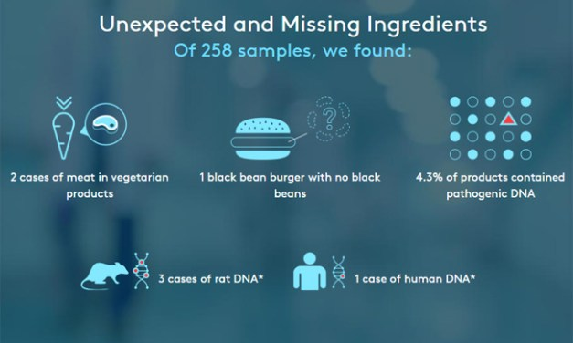 Your Burger May Contain Human Or Rat DNA Claim Researchers