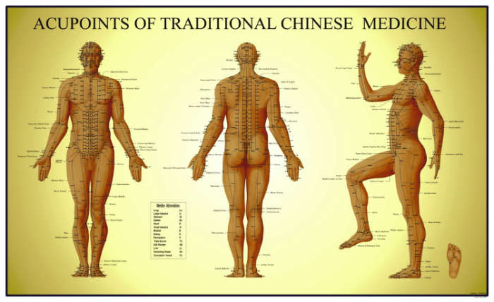 How we choose acupuncture points