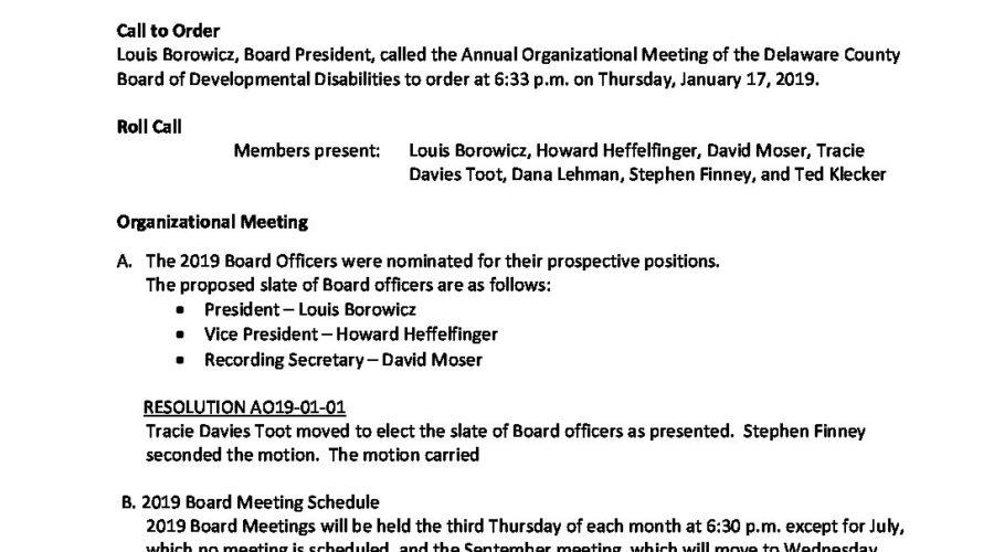 MIN - Minutes January 2019 Organizational Meeting - DCBDD