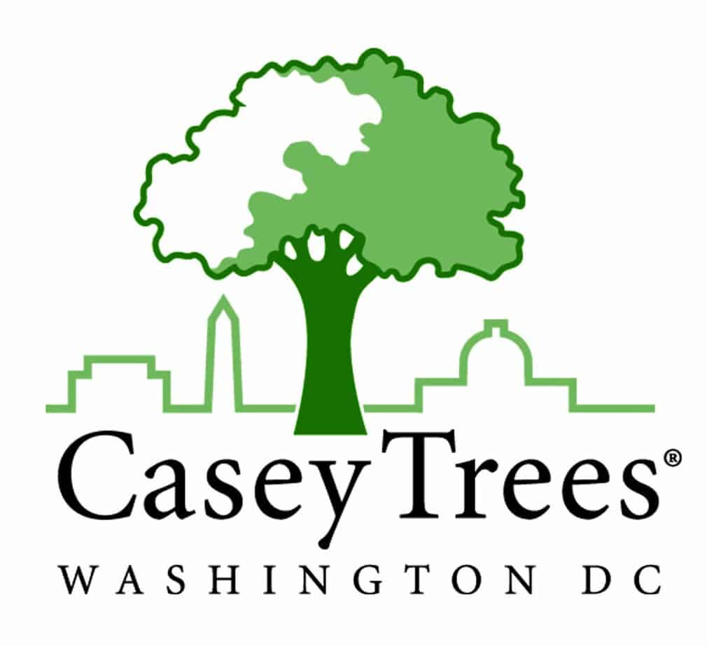 Second Annual Casey Trees Canopy Awards